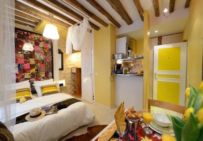 Studio in Paris - D2DD Bollywood Fox
